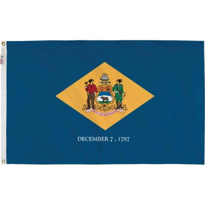 Valley Forge 3 Ft. x 5 Ft. Nylon Delaware State Flag